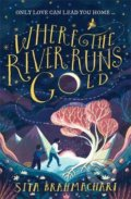 Where the River Runs Gold - Sita Brahmachari