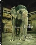 India - Andreas H. Bitesnich