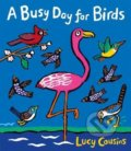 A Busy Day for Birds - Lucy Cousins