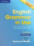 English Grammar in Use 4th edition: Edition without answers - Raymond Murphy