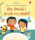 Why Should I Brush My Teeth? - Katie Daynes, Marta Alvarez Miguens (Ilustrátor)