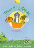 Three Billy-Goats Activity Book - Cathy Lawday, Richard MacAndrew
