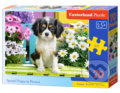 Spaniel Puppy in Flowers -