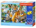 Tigers by the Stream -