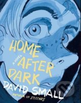 Home After Dark - David Small