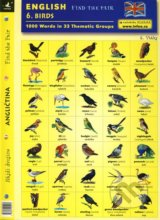 English - Find the Pair 06. (Birds) -